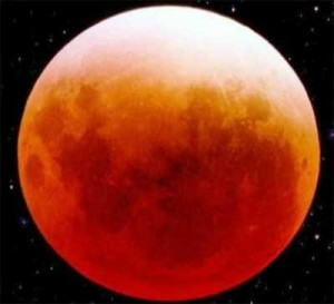 The Lunar Eclipse December 2010