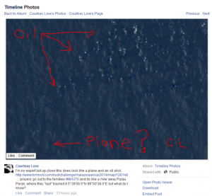Courtney Love found the missing flight MH370